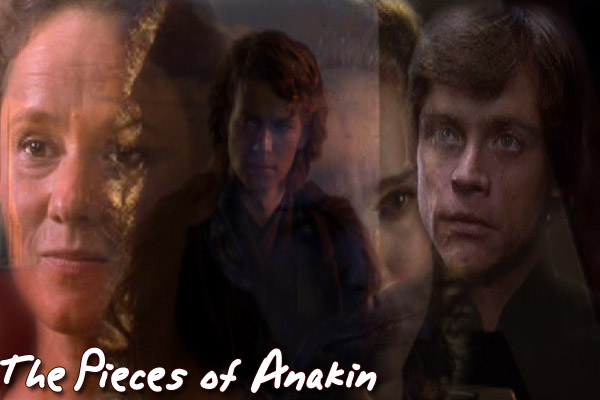 The Pieces of Anakin